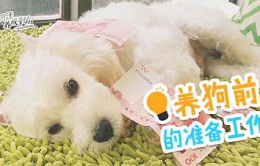 【第十二集】养狗前的准备工作!